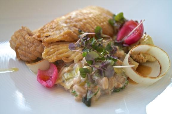 pan roasted market fish - skate | creamy leek | caramelized cauliflower