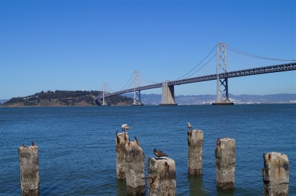 bay bridge and treasure island - photo courtesy of The Harrises of Chicago