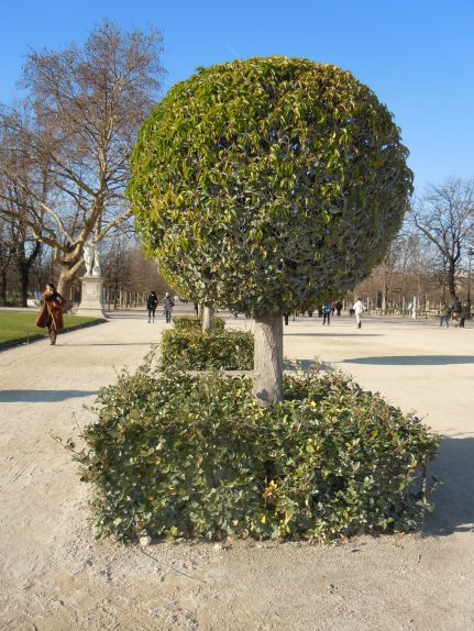 jardins des champs élysées | paris | photo courtesy of The Harrises of Chicago